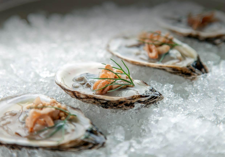 oyster slide